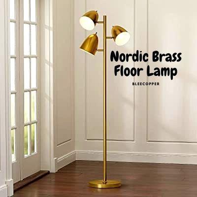 Nordic Brass Floor Lamp